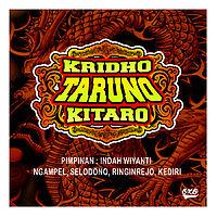 Kridho Taruno (Kitaro) - Sayang (Ndx Aka).mp3