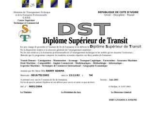 DST_FUSION.doc