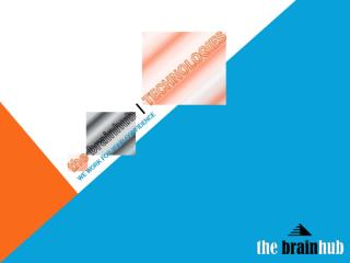 The Brain Hub services.doc